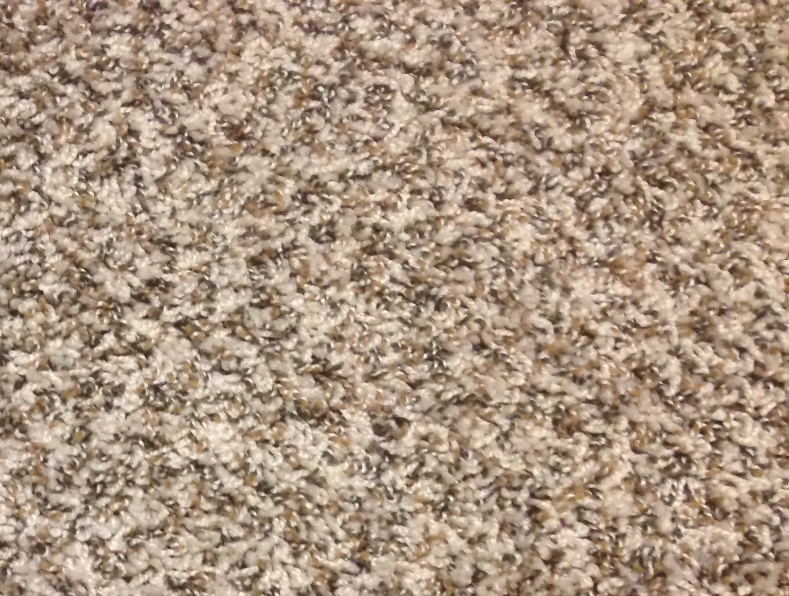 Shaw Carpet Blow Out Deals At Indiana Floors Llc